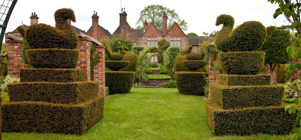 Old style topiary
