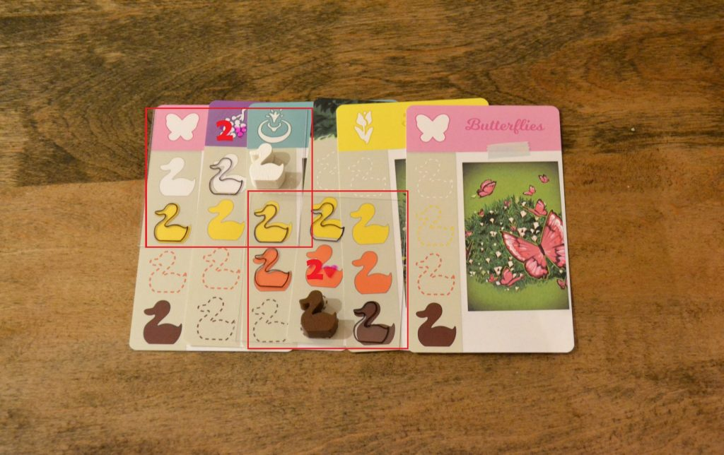 Ducks in Tow Formation Cards